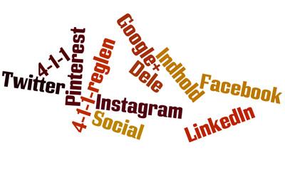 4-1-1 reglen sociale medier