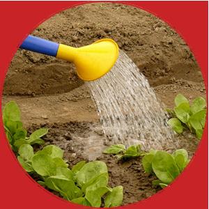 Hvad er lead nurturing og hvad betyder det for din kunderejse?