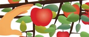 Content marketing er som at plukke modne æbler