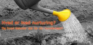 Hvad er lead nurturing?