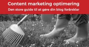 Content marketing optimering